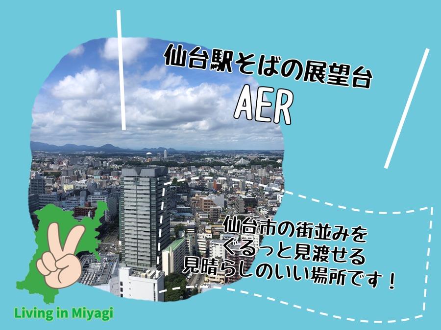 AERの展望台!仙台中を見渡すならココが基本!