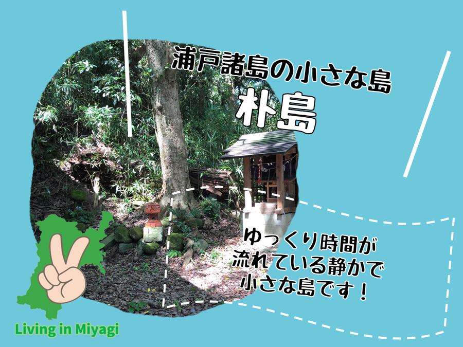 朴島に行ってきた!浦戸諸島で一番小さな島にはゆっくり時間が流れていた!